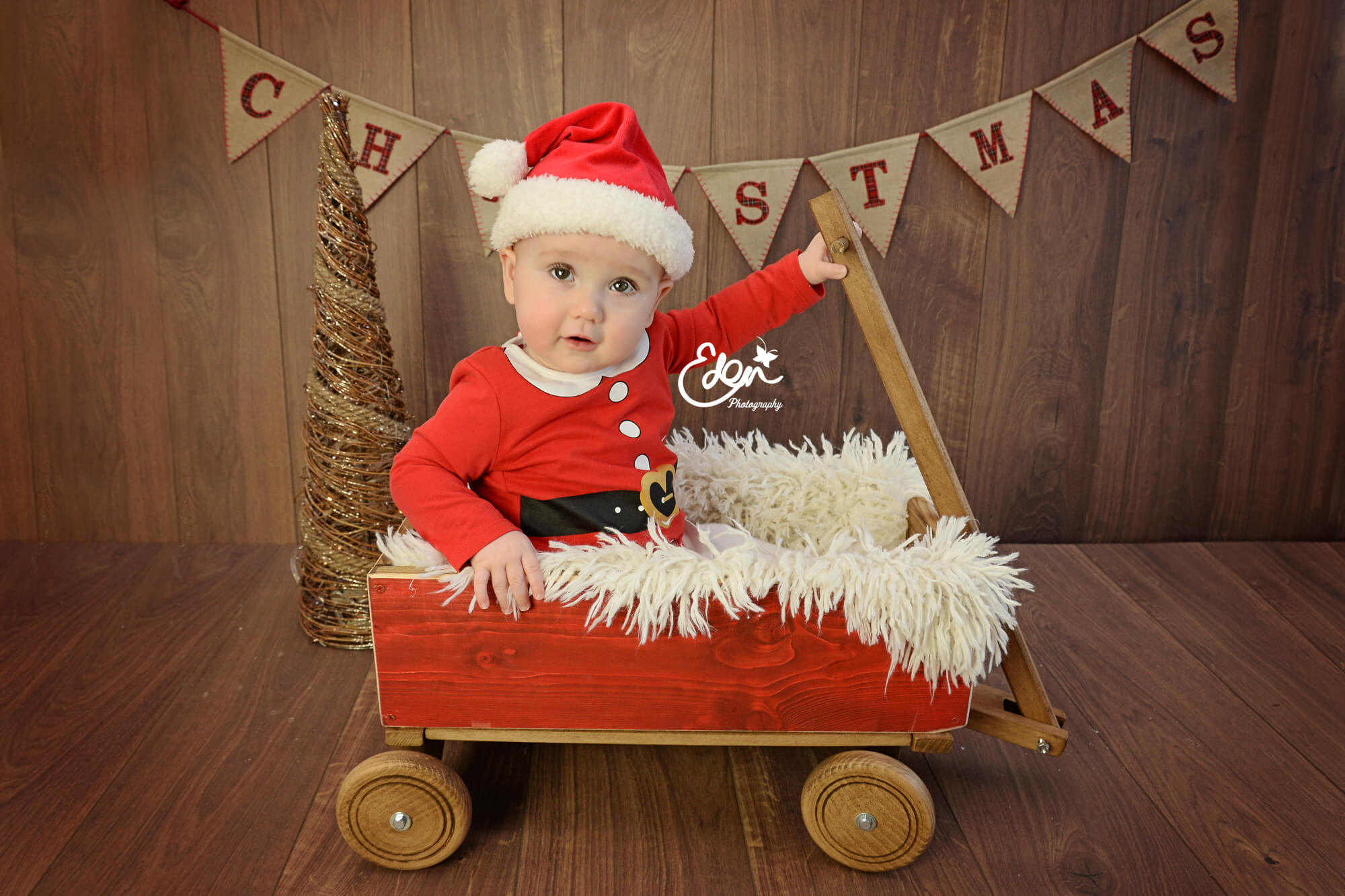 Christmas Baby in a Sledge